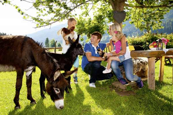 Petting zoo in Mühlbach